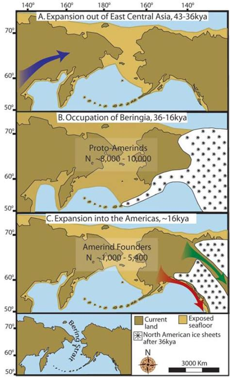 Peopling of the Americas: Three Step Model for Colonizing