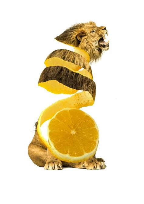 'Delicious' Hybrids Made With Animals, Fruits, And