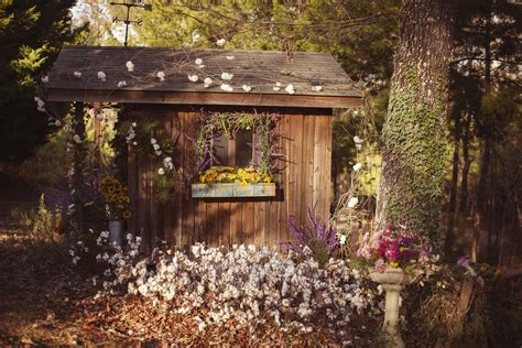 Happy Trails Flower Farm In Mississippi Is A Must-Visit