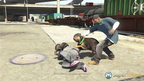 Chop - Soluce Grand Theft Auto V   SuperSoluce