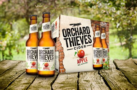 Orchard Thieves – Bold by design